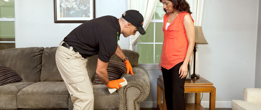 Redmond, WA carpet upholstery cleaning