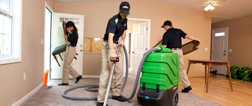 Redmond, WA cleaning services